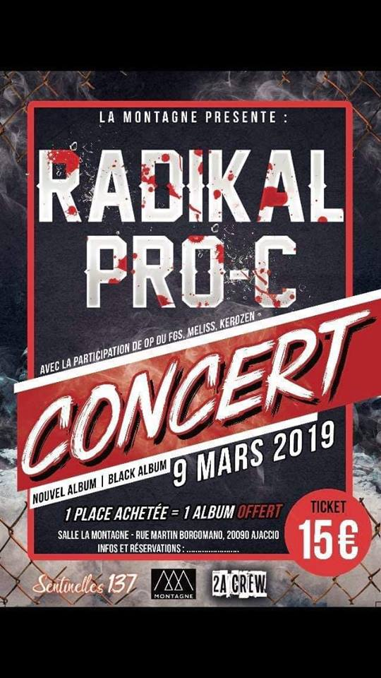 Radikal Pro C en concert