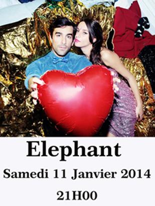 Elephant en concert Janvier 2014